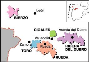 Vin fra Ribera Del Duero