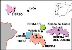 Spansk vin fra Rueda